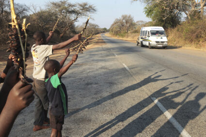 Catching mice for food provides valuable business from the villages of Zimbabwe